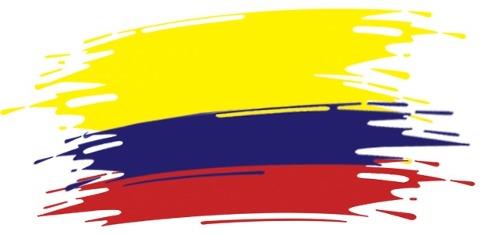 colombiaundial-brasil-2014-tatuaje-temporal-seleccion-de-colombia-14192-MLV20084174200_042014-O
